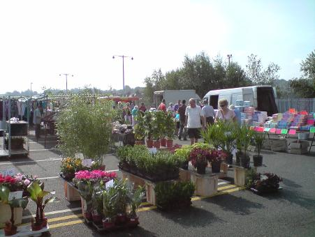 Plant stall at Tonbridge Market